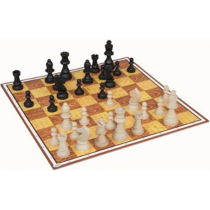 Detoa chess and mills game junior cardboard brown/white 59 pieces